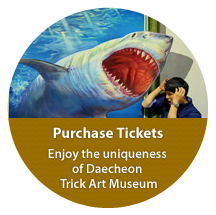 Purchase Tickets, Enjoy the uniqueness of Daecheon Trick Art Museum
